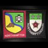 Northampton District / County (Identity) badge
