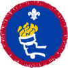 Sports Enthusiast badge