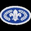 Chief Scouts Silver (Pre 2015) badge