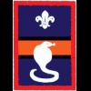 Cobra Patrol (Patrol) badge