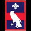 Hawk Patrol (Patrol) badge