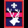 Stag Patrol (Patrol) badge