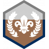 Chief Scout's Bronze badge