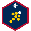 Team Leader badge