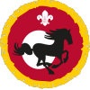 Activity: Equestrian - Approach badge