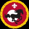 Equestrian badge