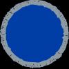 Activity Plus (Advanced) badge