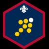 Team Leader badge